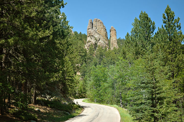 road in the Black Hills of South Dakota